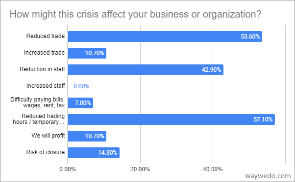 How might the crisis affect your business or organization?